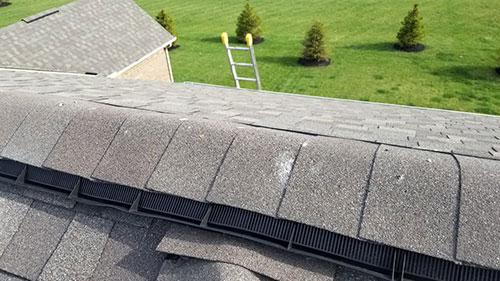 Peak Protector Guard Roof Ridge Vent Animal Guard