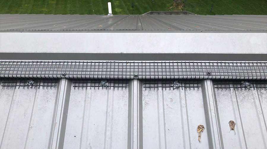 Photo Of Peak Protector - Metal Roof Photo 4